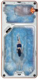 jacuzzi whirlpool Swimspa 4700